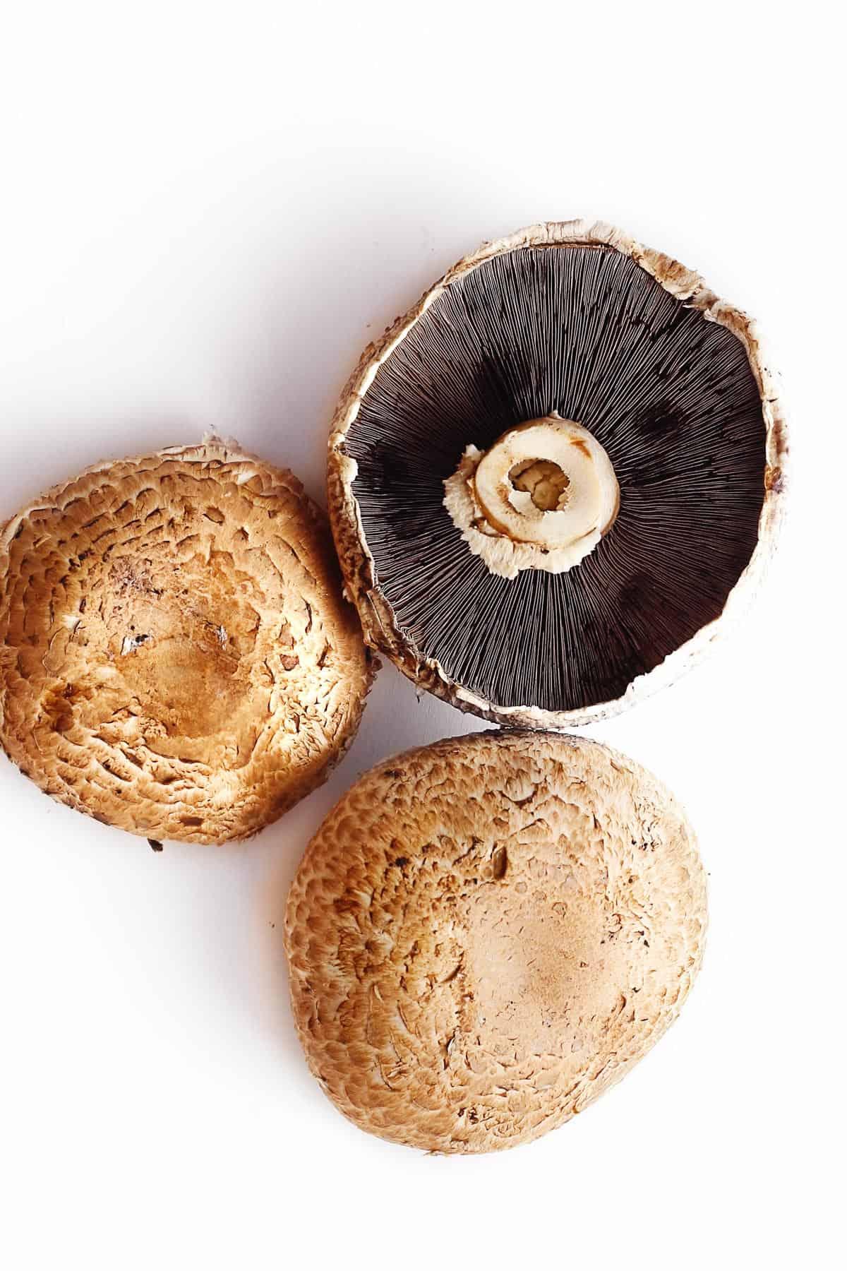 Portobello mushroom picture