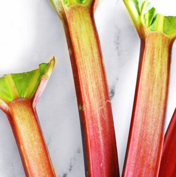 Rhubarb stalks with leaves cut off