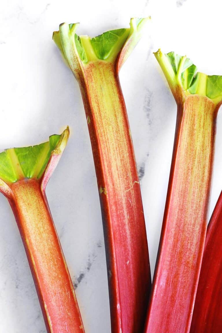 Rhubarb stalks with leaves cut off