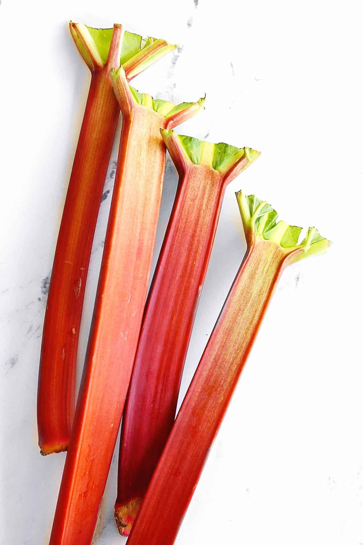 4 rhubarb stalks with leaves cut off
